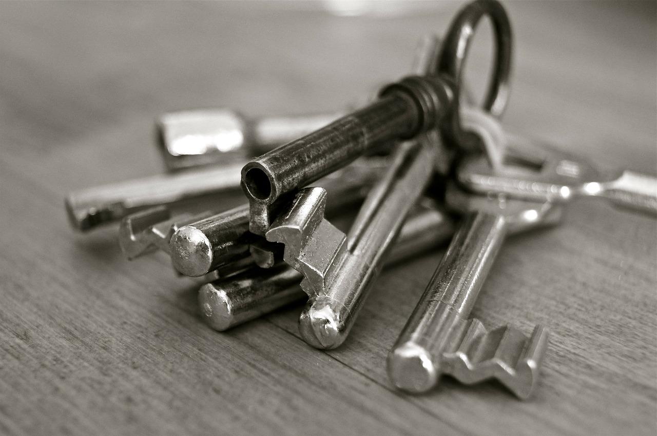 Producenci drzwi zewnętrznych metalowych. Wybór dobrych drzwi zewnętrznych – jakie materiały sprawdzą się najlepiej? Drzwi stalowe wiśniowski