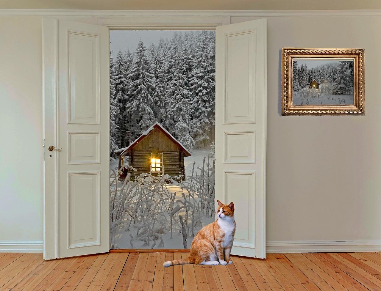 Zewnętrzne drzwi drewniane. Co należy wiedzieć kupując drzwi zewnętrzne? Drzwi wzmocnione